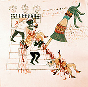 Aztec temple sacrifice. From Codex Magliabicciano. Museo de America, Madrid.
