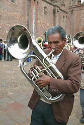 Horn Player In Festival