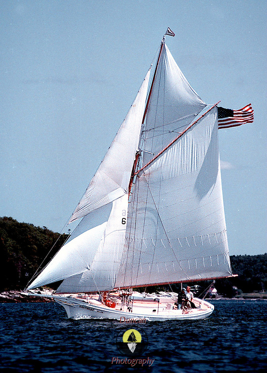 Eastward under full sail . Boothbay Harbor 2000.Photos by Roger S. Duncan.  .