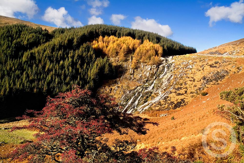 Photographer: Chris Hill, Glenmacnass Waterfall, Wicklow