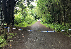Police cordon off part of Hillsborough Forest Park, Co Down, following the discovery of a body.