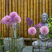 Asian Garden 1034