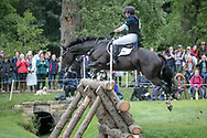 SIMPLY SMART ridden by Hazel Towers (GBR) on day three of the British Equestrian Trade Association CIC*** cross country event at the Bramham International Horse Trials 2017 at  at Bramham Park, Bramham, United Kingdom on 11 June 2017. Photo by Mark P Doherty.