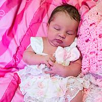 Damiana at 2 weeks old