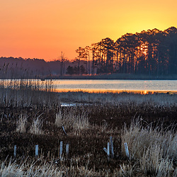 Spring dawn in the wetlands of Blackwater National Wildlife Refuge near Church Creek, Maryland.