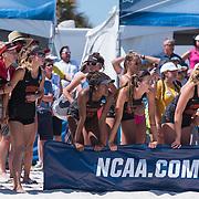USC Beach Volleyball | Gulf Shores | NCAA Championship 2017 | Galleries
