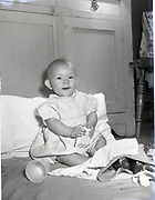 Catholic Protection Rescue Society, Fr Barrett,<br />
