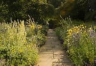 A York stone path through yellow themed borders of achillea and hemerocallis atNewby Hall, Ripon, Yorkshire, UK