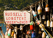 Bouys hang from a dilapidated shack from which fresh lobsters are sold to locals and tourists alike.