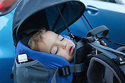 Baby asleep in a backpack baby carrier