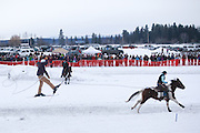 Connor Brown gets some air off a jump while being pulled by Kristen House atop horse Gypsy, at the World Skijoring Championships in Whitefish, Montana on Saturday, January 28. <br /> (REUTERS/Matt Mills McKnight (UNITED STATES)