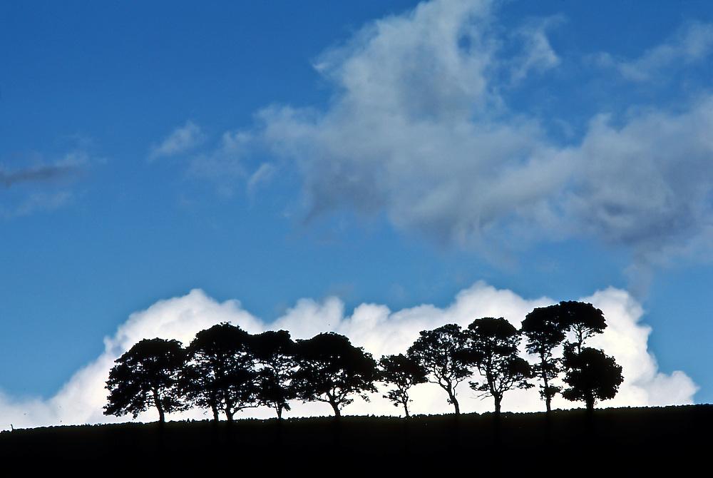 Landscape of Northern England.