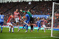 John Carew scores 1st goal as he's challenged by Brighton's Peter Brezovan<br /> Stoke City 2010/11<br /> Stoke City V Brighton Hove Albion 19/02/11<br /> FA Cup 5th Round <br /> <br /> Norway only