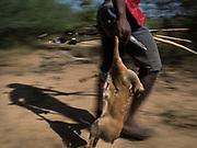 Hunting Dik-dik with Shakwa (red hat), Shoboubou (red shirt) and Motola (young punk haircut). At the Hadza camp of Gidamilanda.