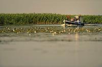 fishermen on the Polish side in the Stettiner Haff lagoon, Stepnica, Poland