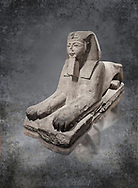Ancient Egyptian Sphinx statue, sandstone, New Kingdom, early 19th Dynasty (1292-1250), Karnak, Temple of Amon. Egyptian Museum, Turin. white background<br /> <br /> This sphinx statue show signs of remodelling. the accentuated curves of the eyebrows, the almond shaped eyes and the wide mouth with fleshy lips are still influenced by the late 18th Dynasty style. The long aquiline nose however is typical of Ramesside. The lappets of the nemes headdress and the beard show clear traces of unfinished re-carving. Drovetti Collection. C1409