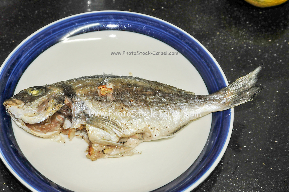 a plate with a Grilled fish