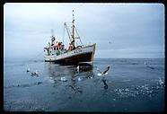 04: FISHERIES GILNETTING