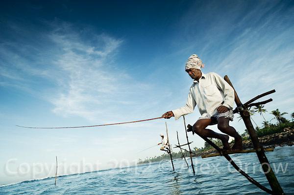 Stilt Fishermen, Weligama, Sri Lanka.