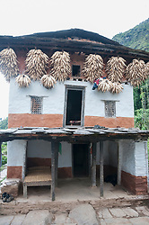 Traditional Nepalese house facade corn on the cob