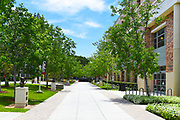 Sodaro Promenade Between Argyros Forum and Leatherby Libraries at Chapman University