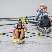 Emma Twigg , New Zealand elite Womens Single Scull wit hhte NZ mens eight in the background <br /> <br /> Racing the Finals at FISA World Rowing Cup III on Sunday 14 July 2019 at the Willem Alexander Baan,  Zevenhuizen, Rotterdam, Netherlands. © Copyright photo Steve McArthur / www.photosport.nz