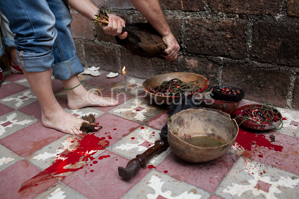 Animal sacrifice is an integral part of the rituals. Santeros believe that blood is necessary to release the negative energy and spirits of those involved. The participants of a Santeria ceremony are blessed with the animal before it is sacrificed. Santeria is a syncretic religion practiced in Cuba, it is a mixture of Yoruba tribal practices brought from Nigeria during Colonial times, and traditional Catholic beliefs. During this time, the slaves used the images of saints to cover up their worship of the Orishas (spirits).