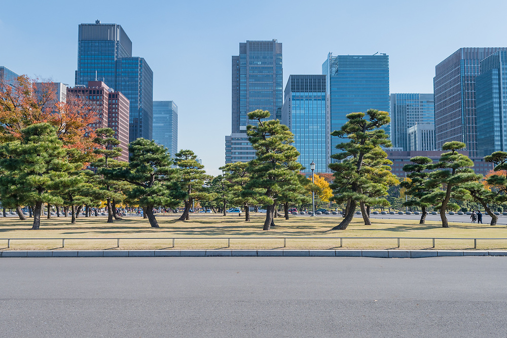 Tokyo's sky scrapers from the Imperial Palace.