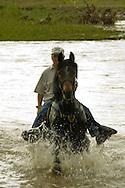 Horseback rider rides Arabian Horse across Little Bighorn River on Crow Indian Reservation, Montana