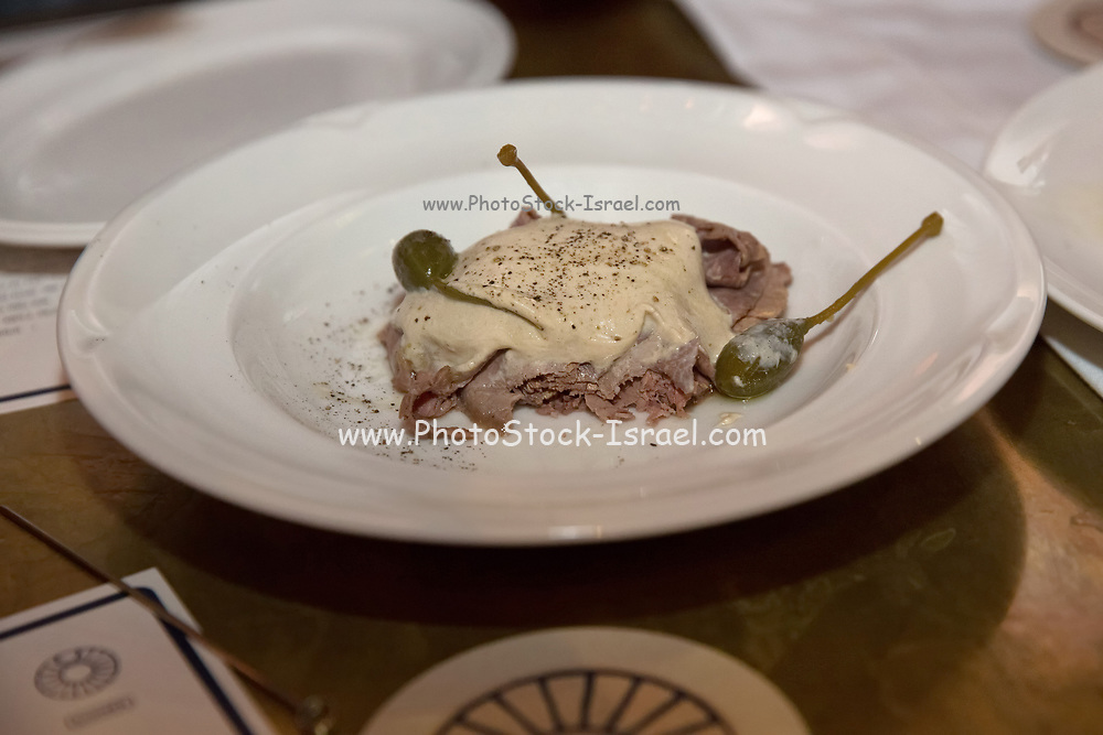 Lamb and turkey shawarma in a plate with tahini sauce