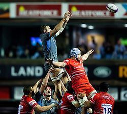 Josh Turnbull of Cardiff Blues claims the lineout<br /> <br /> Photographer Simon King/Replay Images<br /> <br /> European Rugby Challenge Cup Round 2 - Cardiff Blues v Leicester Tigers - Saturday 23rd November 2019 - Cardiff Arms Park - Cardiff<br /> <br /> World Copyright © Replay Images . All rights reserved. info@replayimages.co.uk - http://replayimages.co.uk