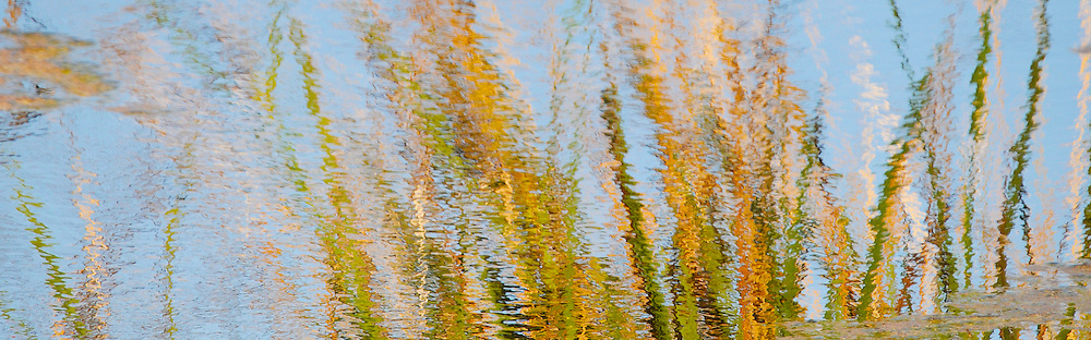 Colorful created compositions from reflected waters.