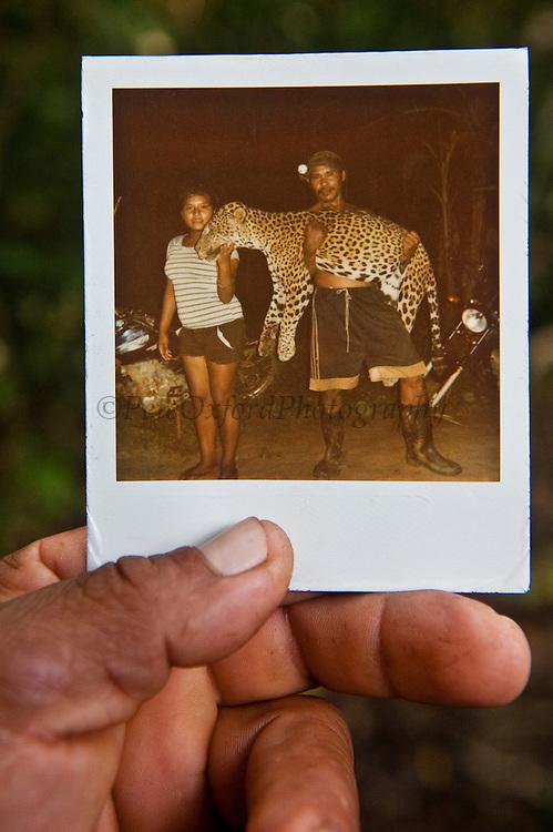 Photo of Killed Jaguar<br /> Rupununi<br /> GUYANA<br /> South America