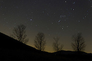 Salisbury Mills, New York - Stars in the night sky above Schunnemunk Mountain on Dec. 14, 2012. The constellation Orion, with its belt of three stars, is above the trees at right. Light pollution colors the sky behind the trees.
