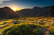 Sunbeams at sunrise in the mountain summer time