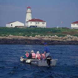 Machias Seal Island, ME. Atlantic Puffin watching tour coming in for a landing.