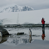 Tourists explore a cove at Damoy Point on Wiencke Island, Antarctica, a home to Gentoo Penguins. In the far background are peaks of the Wall Range.