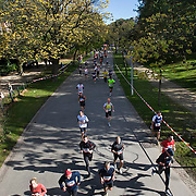 Nederland Amsterdam  17-10-2010 20101017..Marathon van Amsterdam, deelnemers rennen over het parcours door in  het Vondelpark in de najaarszon. Holland, The Netherlands, dutch, Pays Bas, Europe ..Foto: David Rozing