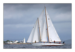 The final day of racing of the Fife Regatta on the King's Course North of Great Cumbrae<br /> Astor, Richard Straman, USA, Schooner, Wm Fife 3rd, 1923<br /> <br /> <br /> * The William Fife designed Yachts return to the birthplace of these historic yachts, the Scotland's pre-eminent yacht designer and builder for the 4th Fife Regatta on the Clyde 28th June–5th July 2013<br /> <br /> More information is available on the website: www.fiferegatta.com