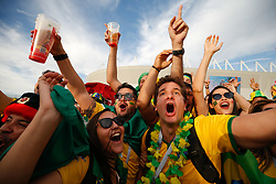 June 17, 2018 - Rostov Do Don, Rússia - ROSTOV DO DON, RO - 17.06.2018: BRAZIL VS SWITZERLAND - Brazilian fans before match between Brazil and Switzerland valid for the first round of group E of the 2018 World Cup, held at the Rostov Arena in Rostov on Don, Russia. (Credit Image: © Marcelo Machado De Melo/Fotoarena via ZUMA Press)