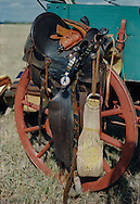 The cowboy life is legendary. This gallery, by New Orleans Photographer Michelle Aline Pujols, explores the some of the tools, excitement and hard work the cowboys of the Old West experienced. The old west was a rugged and hard place to work and sometimes play.