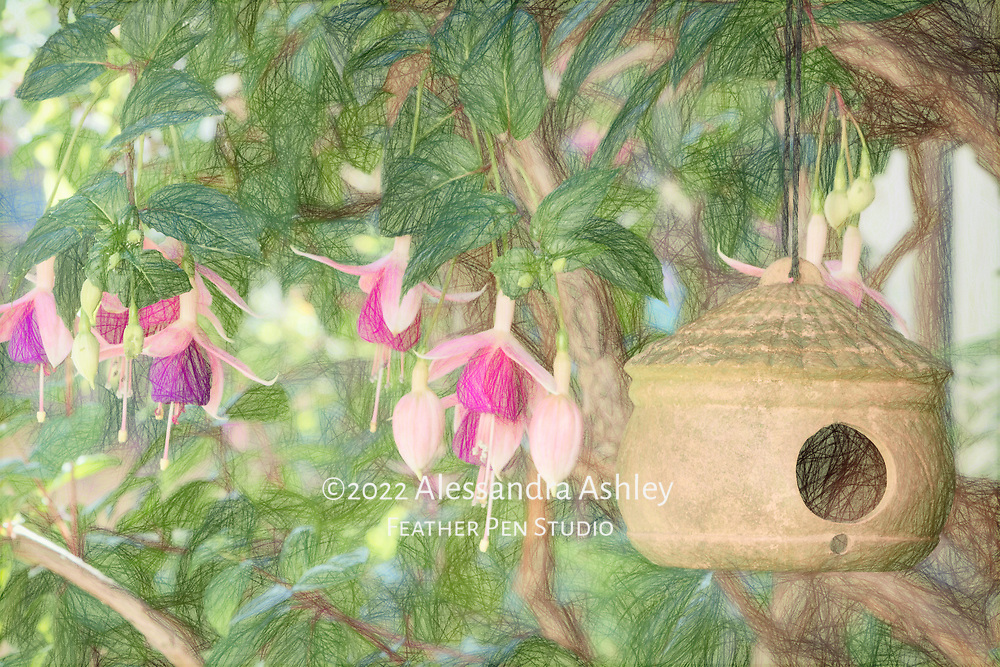 Garden vignette with hanging birdhouse and fuchsia. Colored pencil effect blended with original photo.