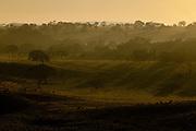 Patos de Minas_MG, Brasil..Paisagem rural ao amanhecer em Patos de Minas, Minas Gerais..Countryside at dawn in Patos de Minas, Minas Gerais..Foto: LEO DRUMOND / NITRO