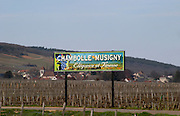 vineyard sign  chambolle-musigny cote de nuits burgundy france