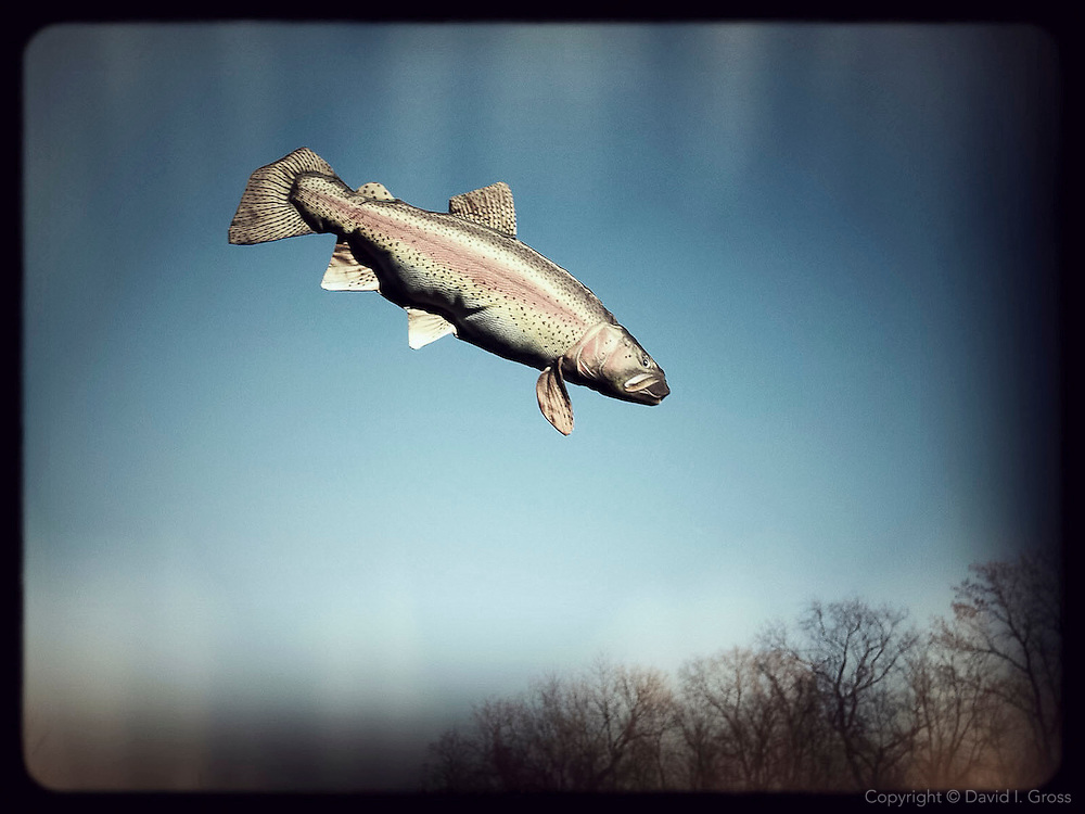 Fishing on the prairie.