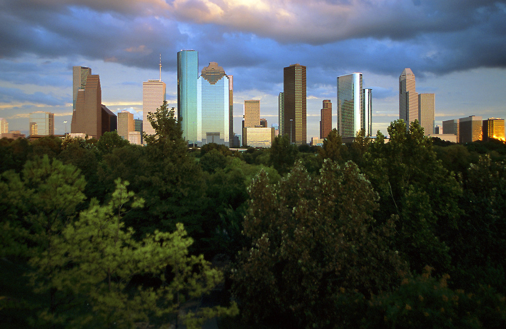 Western view of the Houston, Texas skyline in the late afternoon with trees in the foreground.