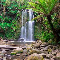Beauchamp Falls - Otways - Victoria - Australia