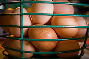Sometimes the eggs will have mud or poop on them. Just brush it off with a wire brush and then wash the egg before eating.