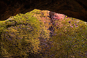 A small arch in Hidden Canyon, Zion National Park, Utah.