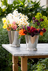 Spring cut flowers being conditioned in silver buckets